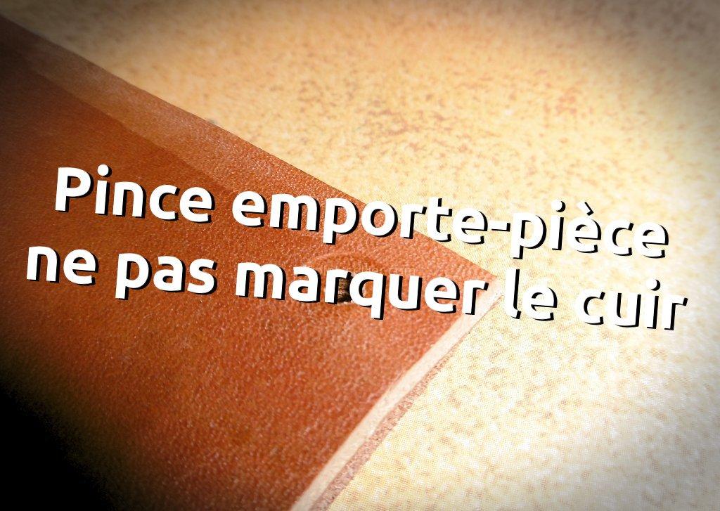 outil cuir pince emporte piece trou protéger fleur cuir tithouan point sellier stage apprendre maroquinerie