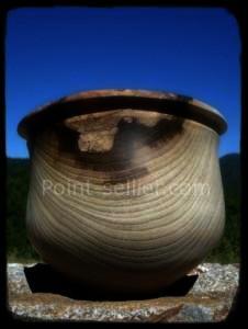 Rencontre à la foire bio de Montfroc de Frederic Gitton, artisan tourneur sur bois